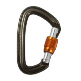 Black Diamond Positron Screwgate Carabiner - 3 or more and Save